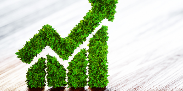 THE RISE OF GREEN ECONOMY, A NEW CHALLENGE FOR MANAGERS AND A NEW OPPORTUNITY FOR INVESTORS